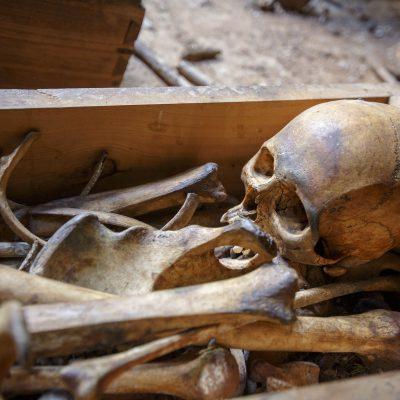 Sfinții necunoscuți sunt mai mulți decât sfinții cunoscuți în Sfântul Munte - un fotoreportaj cu unii dintre ei