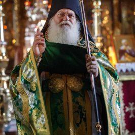 Cele opt gânduri ale răutății - Fotoreportaj de la sărbătoarea Sfântului Efrem Sirul (Audio)